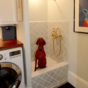 san rafael dominican remodel with dogbath