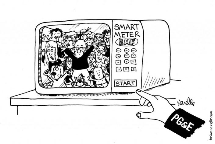 SmartMeter PGE