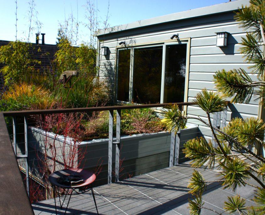 noe valley roof garden